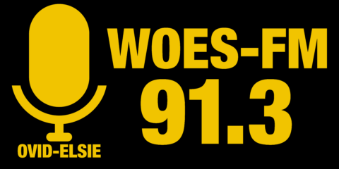 woes-logo-september-2016